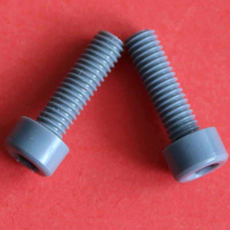 M10 PVC Socket Head Screws